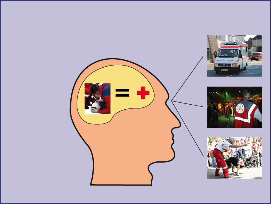 Grafik: Abstrahieren von visuellen Informationen im Gehirn