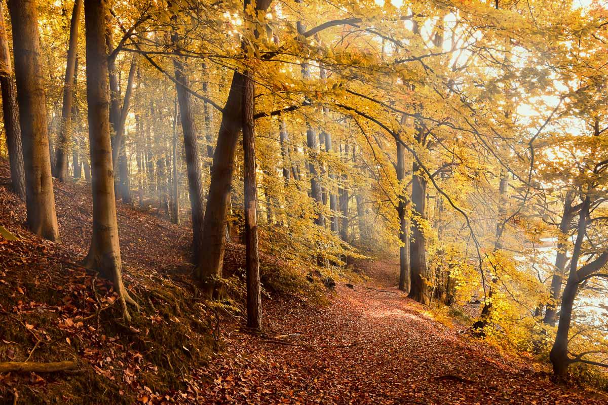 Werbeideen Herbst